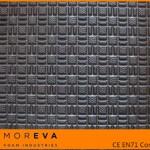 Eva texture1
