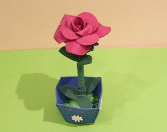 Eva bunga