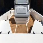 Fusion 19 with faux teak marine mat